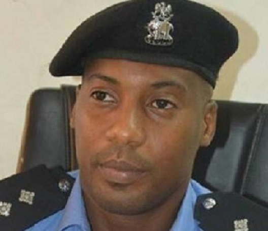 Edgal Remains Lagos Ag. Police Commissioner, Not Demoted- Police Pro Famous-Cole