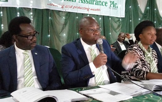 Mutual Benefits Assurance, Shareholders, Securities and Exchange Commission (SEC), Annual General Meeting (AGM), chairman of the company Dr. Akin Ogunbiyi, insurance company, Nigeria, #MutualBenefitsAssurance, #shareholders, #insurance