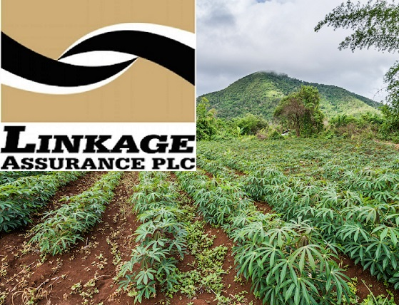 Linkage Assurance Plc, Insurance, Nigeria, Farmers, Agriculture, Government, Linkage Assurance Farm All Risk lnsurance, Linkage Assurance Farm Motor Insurance, Linkage Assurance Livestock Insurance, NAICOM